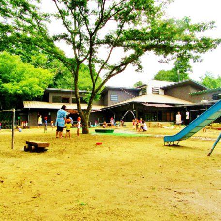 自然豊かな園庭で、子供たちがのびのびと活動できる環境です